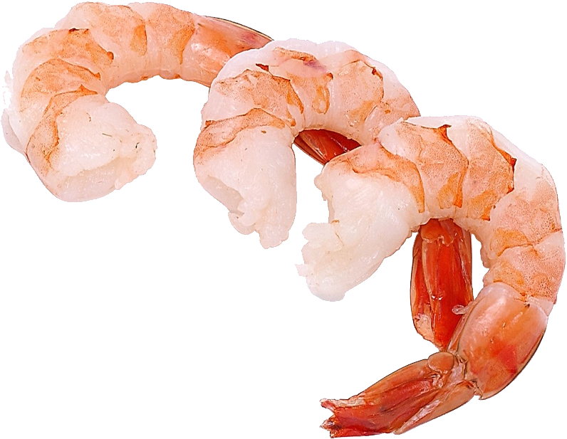 Download and use Shrimps PNG Picture