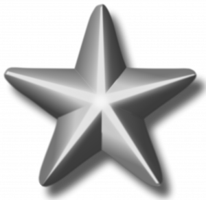Download this high resolution Silver PNG Picture
