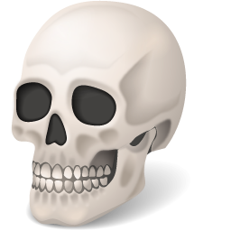 Download this high resolution Skeleton