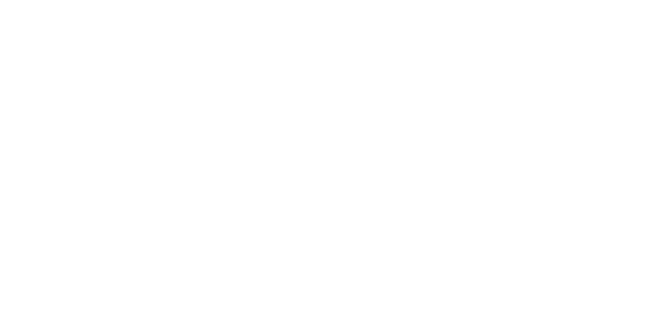 Download for free Skype Icon