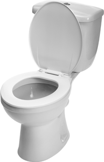 Download this high resolution Toilet PNG in High Resolution