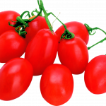 Best free Tomato Transparent PNG File