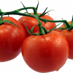 Now you can download Tomato  PNG Clipart