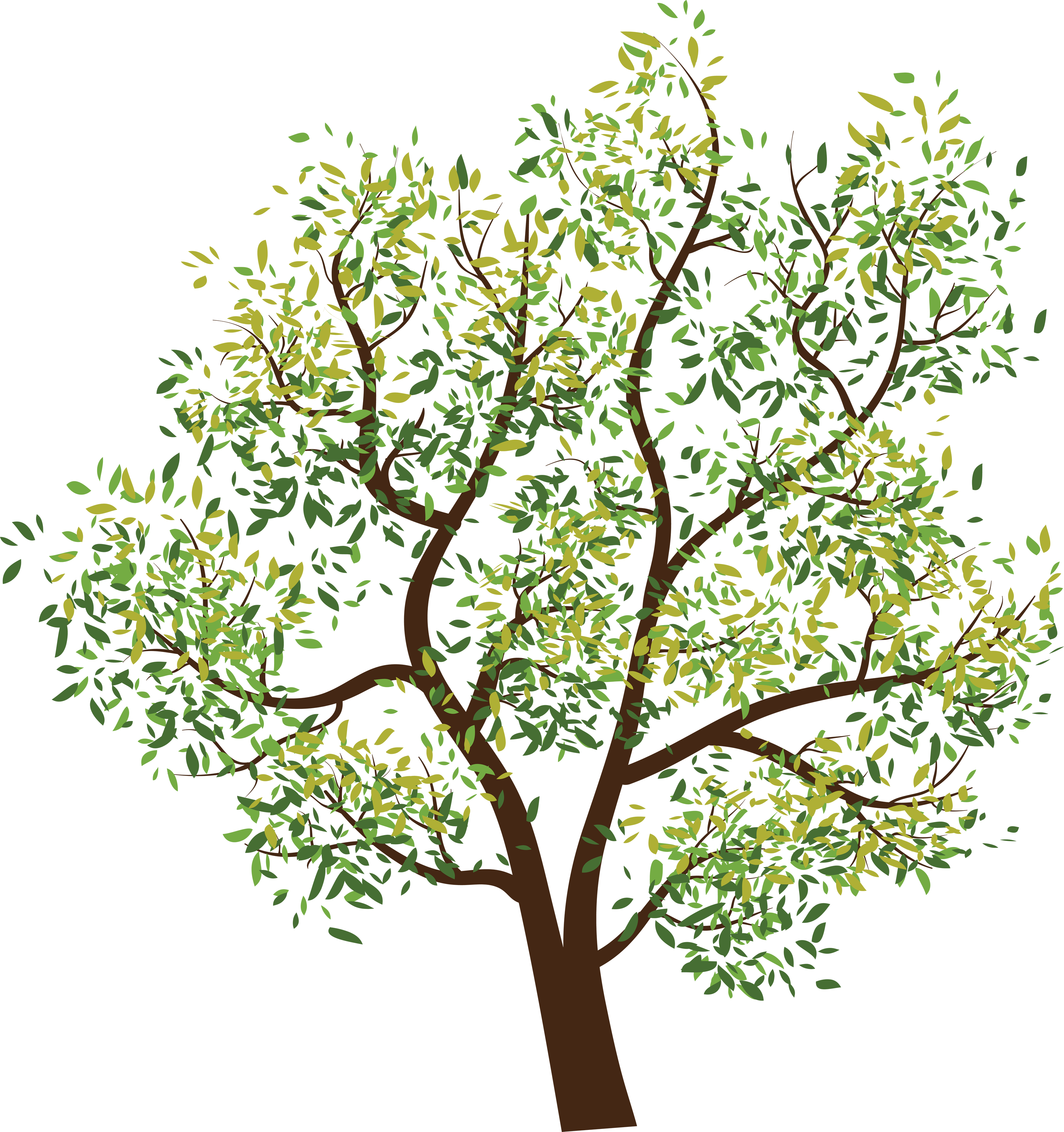 Tree Transparent PNG Image | Web Icons PNG