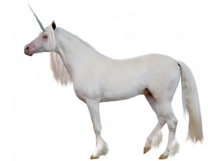 Now you can download Unicorn PNG Image