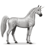 Download and use Unicorn PNG Picture