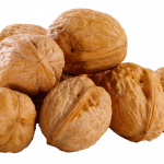 Download this high resolution Walnut  PNG Clipart