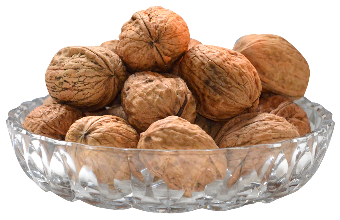 Download this high resolution Walnut PNG