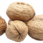 Free download of Walnut PNG Picture