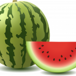 Now you can download Watermelon PNG in High Resolution