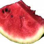 Download and use Watermelon In PNG