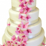 Download this high resolution Wedding Cake PNG Icon
