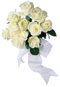 Now you can download White Roses  PNG Clipart