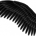 Download and use Wings Icon