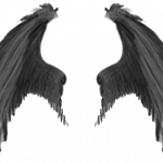 Download for free Wings Transparent PNG Image
