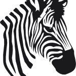 Download and use Zebra PNG